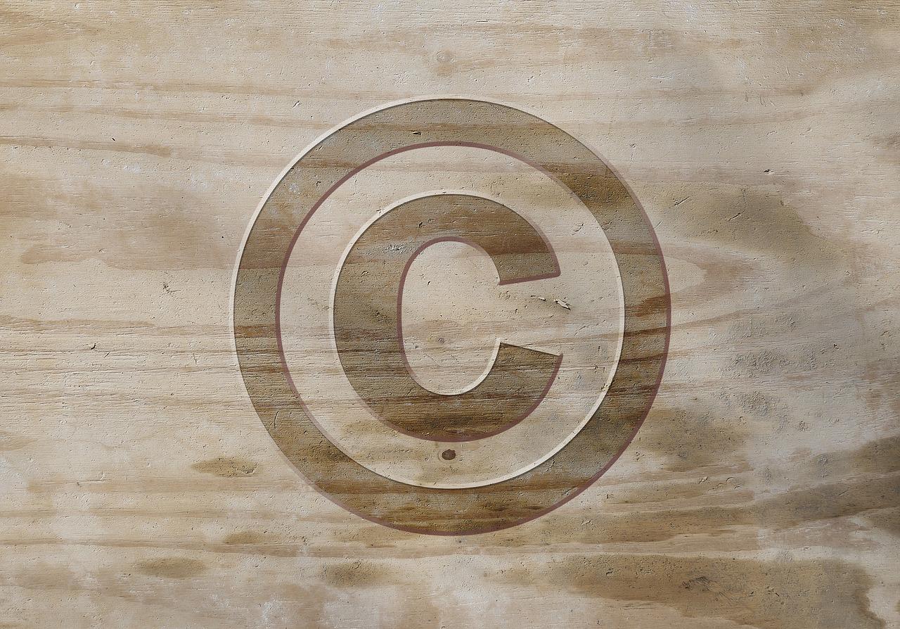 Openbaar videocollege Auteursrechtspraak 2020